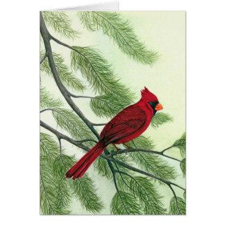 Cardeal da tarde - cartão de nota