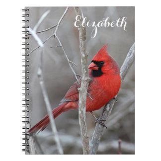 Cardeal do norte caderno espiral