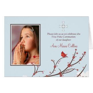Cardeal em um cartão com fotos dobrado ramo