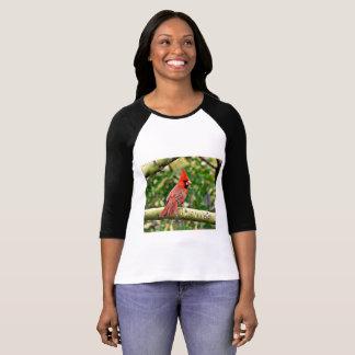 Cardeal em uma camiseta do Raglan das mulheres do