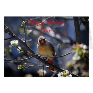 Cardeal fêmea da irmã do feliz aniversario cartão comemorativo