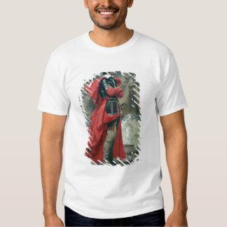 Cardeal Richelieu na parede de mar no La Tshirt