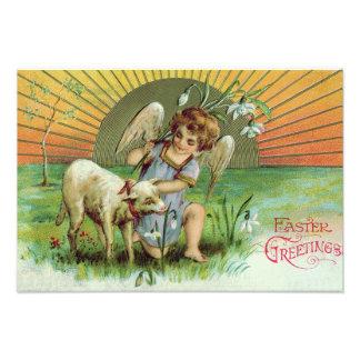 Carneiros do cordeiro de Sun do querubim do anjo Impressão De Foto