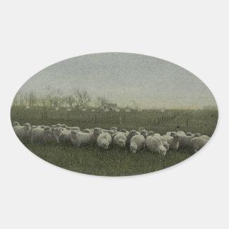 carneiros que pastam a foto 1918 adesivos oval