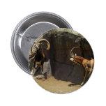 Carneiros selvagens de Mouflon que riscam 1 Botons