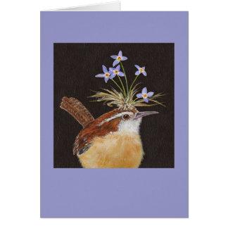 Carriça de Carolina com cartão dos bluets
