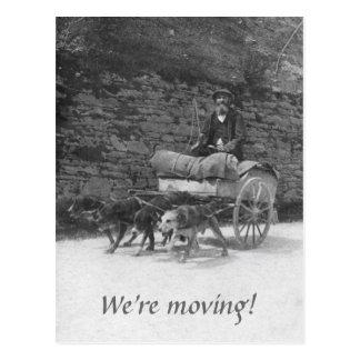 Carro do cão com mover-se farpado do homem cartão postal