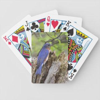 Carta De Baralho Bluebird