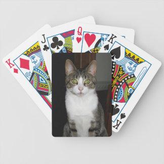Carta De Baralho Gato de gato malhado com os olhos verdes grandes
