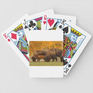 Carta De Baralho Nação da família do bisonte