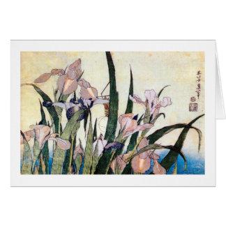Cartão 杜若ときりぎりす, íris do 北斎 e gafanhoto, Hokusai