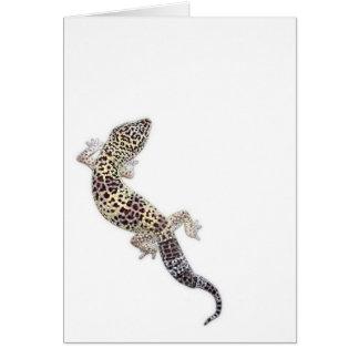 Cartão 01 do geco