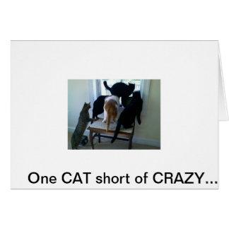 Cartão 042310_09301 [1], um CAT curto de LOUCO….