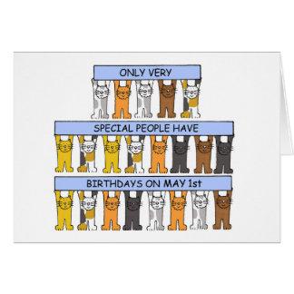 Cartão 1º de maio gatos do aniversário