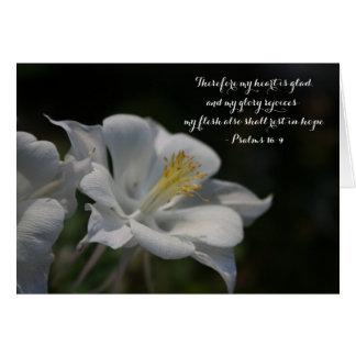Cartão 16:9 aquilégia do salmo da estrela de tiro da flor