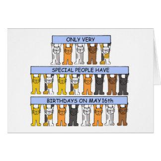 Cartão 16 de maio gatos do aniversário