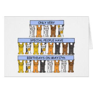 Cartão 17 de maio gatos do aniversário