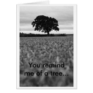 Cartão 28 de agosto, você lembra-me de uma árvore…