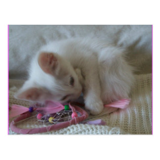 Cartão #2 do gatinho da menina