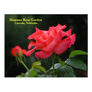 Cartão #335N 0335 de HRG