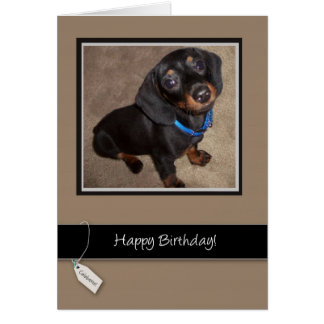 Cartão 3913 feliz aniversario, cão, Dachshund