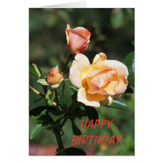 Cartão 3 rosas, aniversário bonito