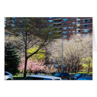 Cartão 59th Central Park da rua sul