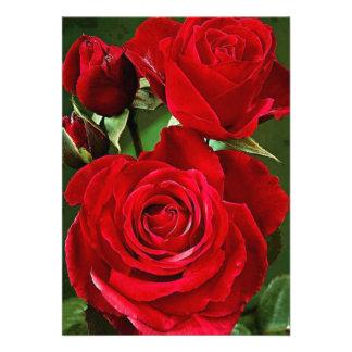 """cartão 5"""" da rosa vermelha x 7"""" branco básico convites"""