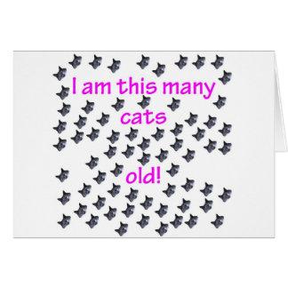 Cartão 69 cabeças do gato velhas