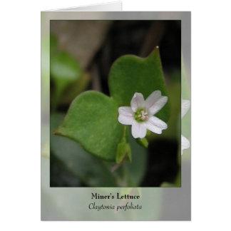 Cartão A alface do mineiro - Notecard nativo