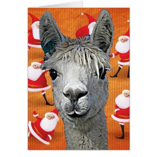 Cartão A alpaca YouBeaut feito sob encomenda projeta o