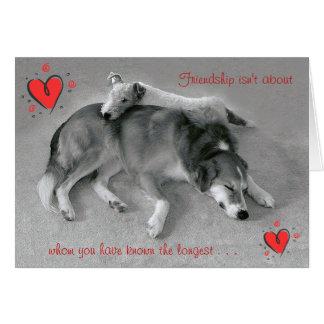 Cartão A amizade não é sobre quem você sabe o mais longo
