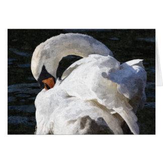 Cartão A arte Preening da cisne