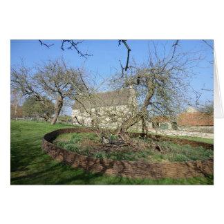 Cartão A árvore de Newton no solar de Woolthorpe