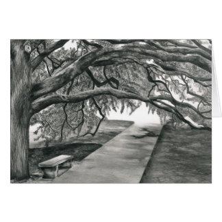 Cartão A árvore do século