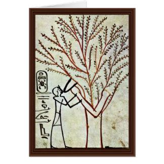 Cartão A árvore santamente do rei Ser Fed (senhora Sy