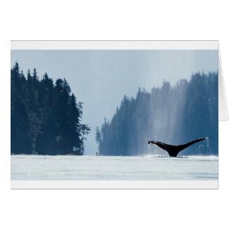 Cartão A baleia de Humpback mergulha no Haida Gwaii, B.C.