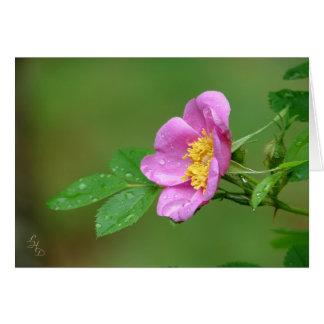 Cartão A beleza da tempestade dos primaveras selvagem