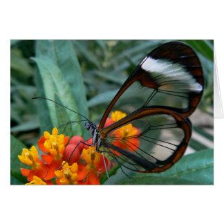 Cartão a borboleta das asa-tornar-janelas