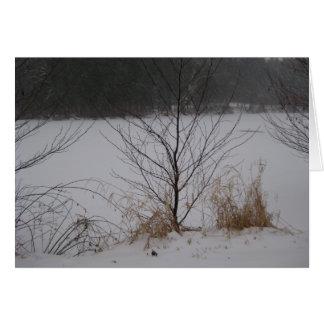 Cartão A borda do lago, inverno