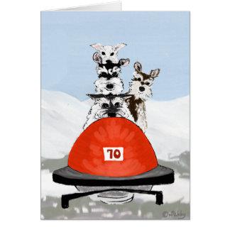 Cartão A equipe de Bobsleighing do Schnauzer