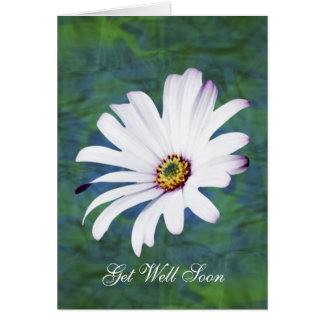 Cartão A flor da margarida obtem bem logo