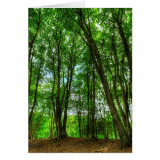 Cartão A floresta inglesa antiga