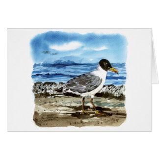 Cartão A gaivota de Pallas