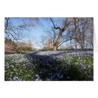 Cartão A glória do primavera--Cartão