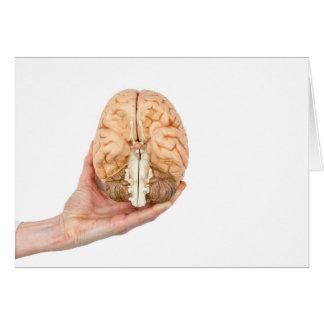 Cartão A mão guardara o cérebro humano modelo no fundo