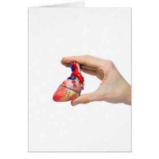 Cartão A mão guardara o coração humano modelo entre os
