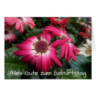 Cartão A margarida cor-de-rosa do Gerbera floresce