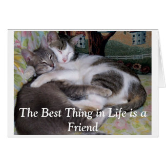 Cartão A melhor coisa na vida é um amigo