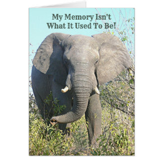 CARTÃO A MEMÓRIA DE ELEPHANT/MY NÃO É O QUE SE USOU PARA
